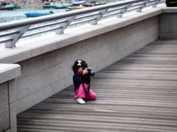 Photo hong kong